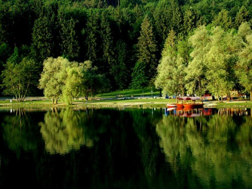 Lake Bled 'Reflections' - Barry Price