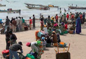 Beach landing and trading, Gambia. Source: UNCTAD 2014.